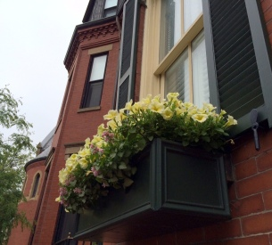 Beacon Hill flower box
