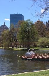 8 Swan Boat Cityscape